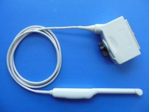 Siemens EC9-4 Endocavity Ultrasound Transducer Probe for Antares